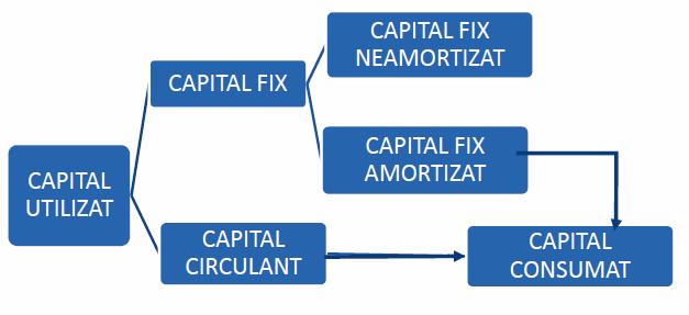 economie/capitalul-economie-bac.png