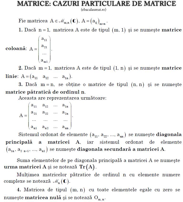 matrice_cazuri_particulare_ebacalaureat.ro